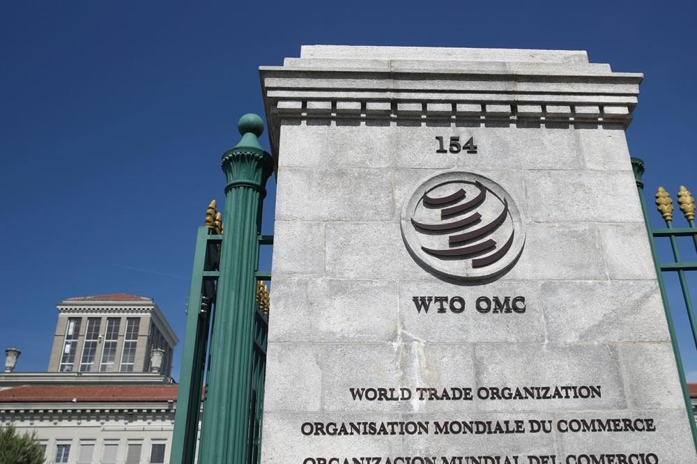 WTO esamina la rinuncia alla proprietà intellettuale del vaccino COVID